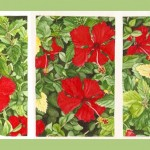 HIBISCOS, 2007.  Watercolor on paper, 6 x 20 in (15 x 51 cm).